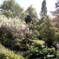 Amoureux des plantes? Explorez des jardins privés!