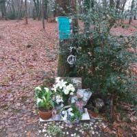 33 ans après la catastrophe aérienne du Pinsan, les victimes ne sont pas oubliées !