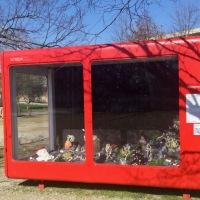 Une exposition originale au Jardin botanique jusqu'au 7 mars